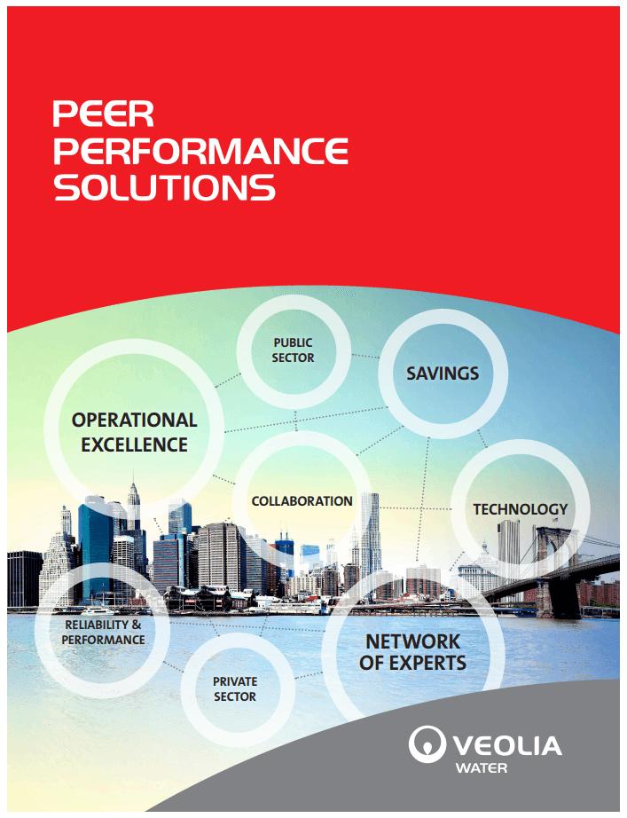 nyc peer performance solutions brochure